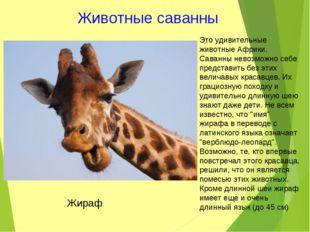 Животные саванны Это удивительные животные Африки. Саванны невозможно себе пр