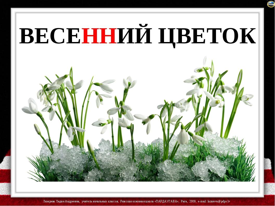 ВЕСЕННИЙ ЦВЕТОК Лазарева Лидия Андреевна, учитель начальных классов, Рижская...