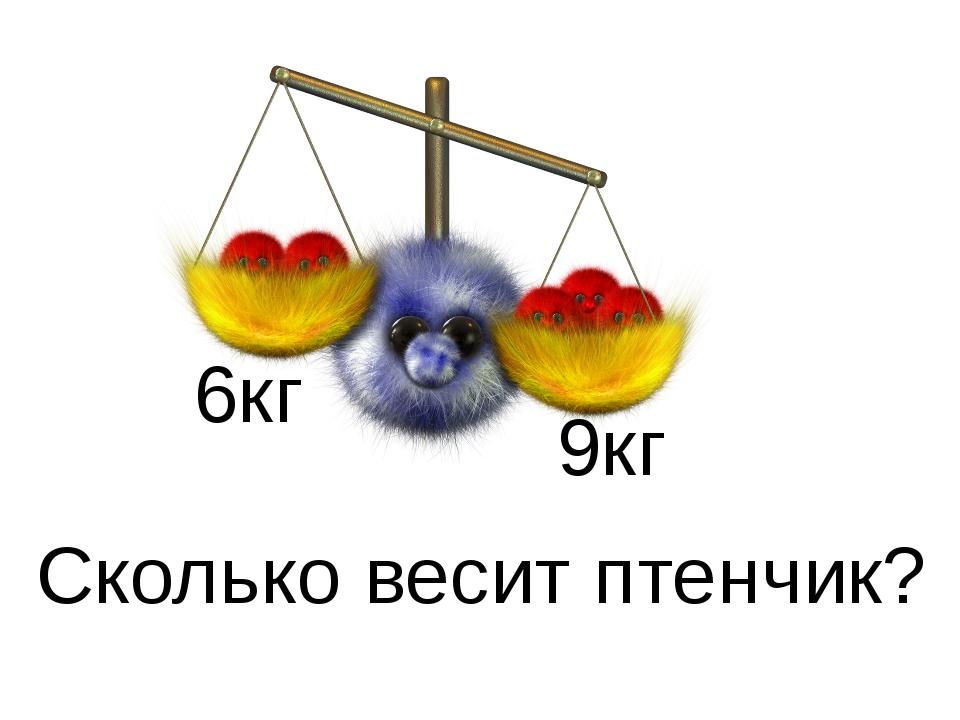 6кг 9кг Сколько весит птенчик?