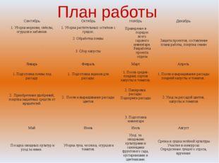 План работы Сентябрь Октябрь Ноябрь Декабрь 1. Уборка моркови, свёклы, огурцо