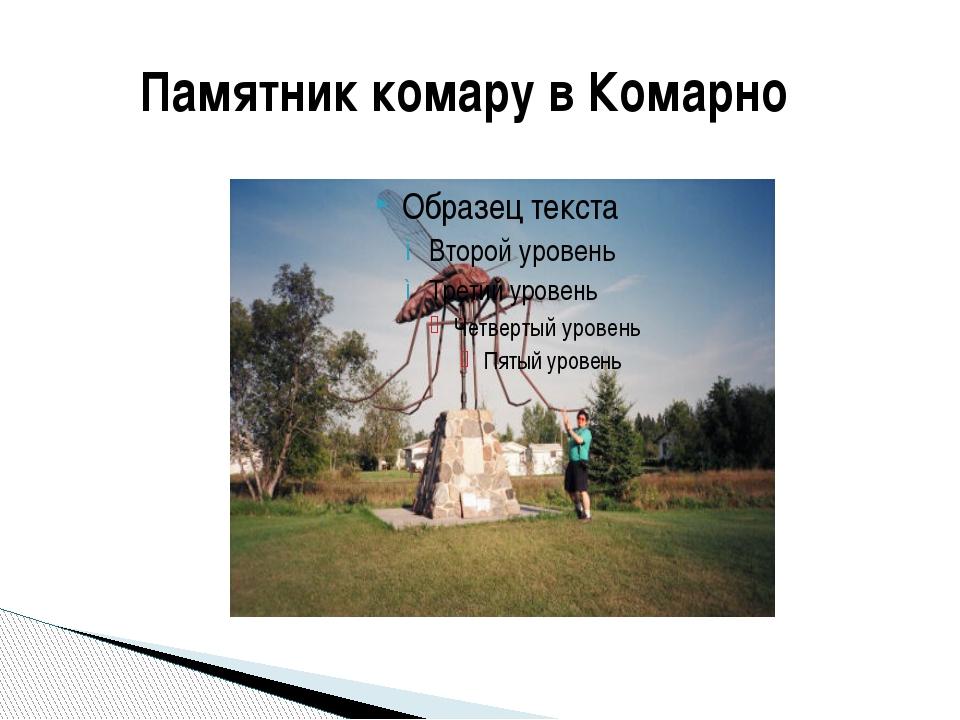 Памятник комару в Комарно