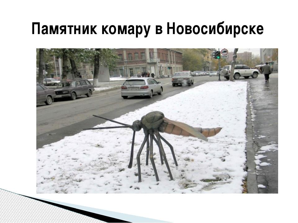 Памятник комару в Новосибирске