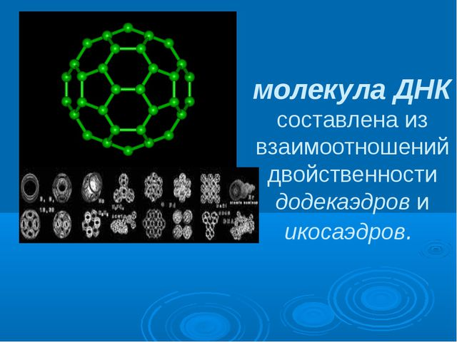 молекула ДНК составлена из взаимоотношений двойственности додекаэдров и икоса...