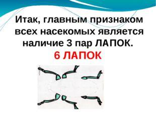 Итак, главным признаком всех насекомых является наличие 3 пар ЛАПОК. 6 ЛАПОК