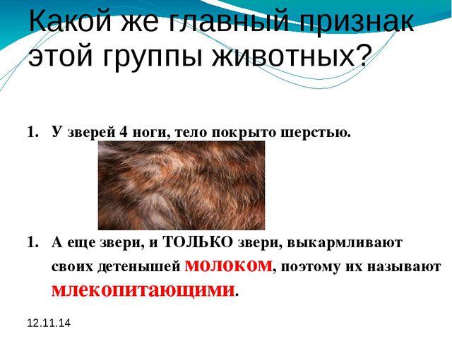 Какой же главный признак этой группы животных? У зверей 4 ноги, тело покрыто...