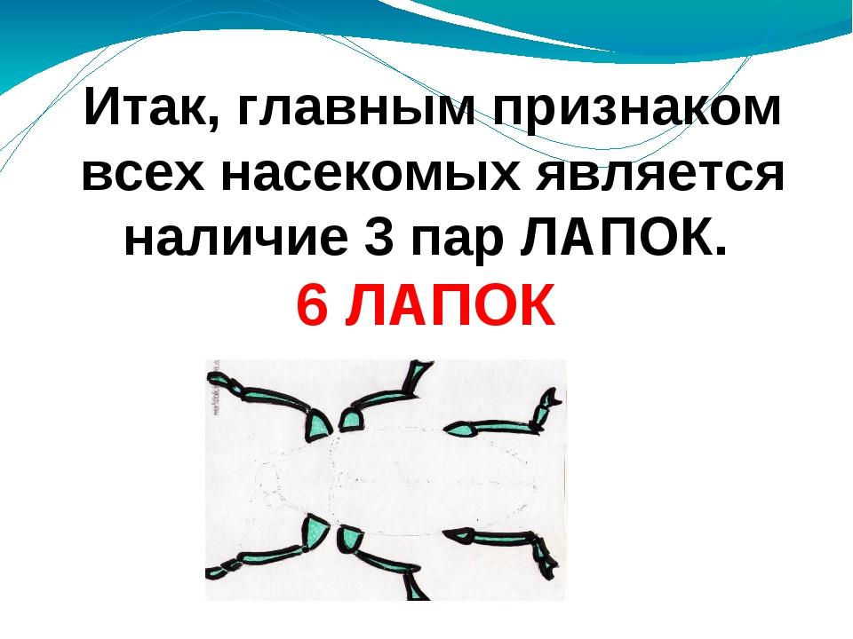 Итак, главным признаком всех насекомых является наличие 3 пар ЛАПОК. 6 ЛАПОК...