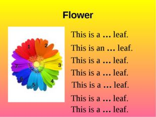 Flower 1 2 3 4 5 6 This is a … leaf. This is an … leaf. This is a … leaf. Thi