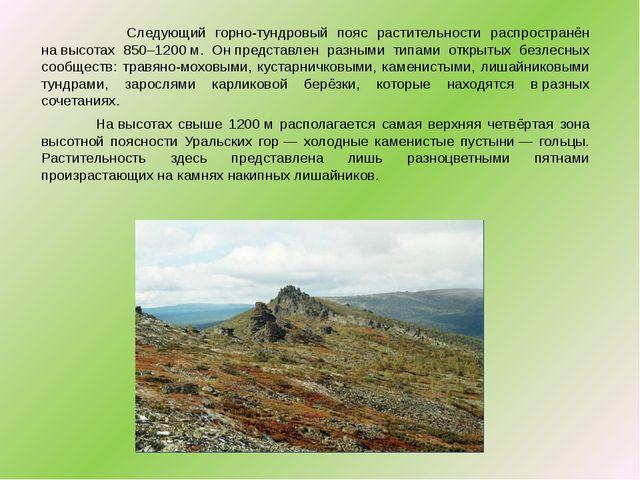 Следующий горно-тундровый пояс растительности распространён навысотах 850–1...