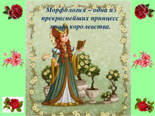 Морфология – одна из прекраснейших принцесс этого королевства.