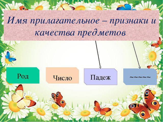 Имя прилагательное – признаки и качества предметов Род Число Падеж ~~~~~