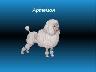 Артемон