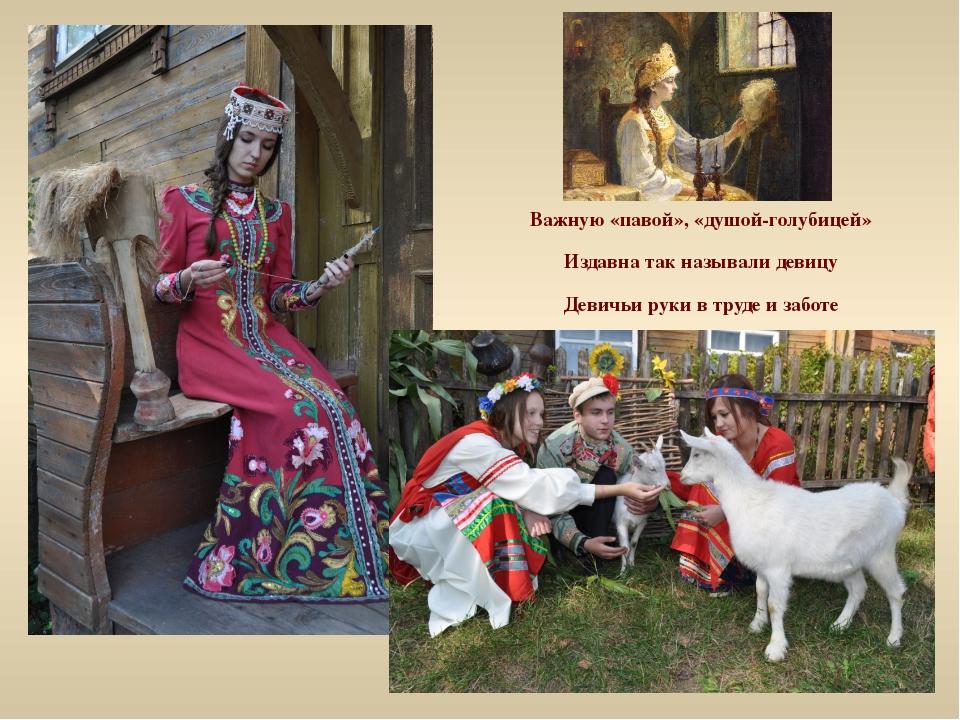 Важную «павой», «душой-голубицей» Издавна так называли девицу Девичьи руки в...