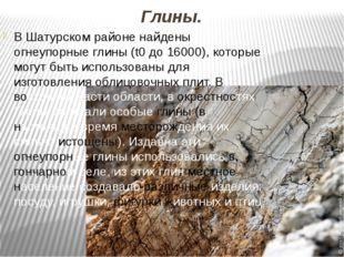 Глины. В Шатурском районе найдены огнеупорные глины (t0 до 16000), которые мо