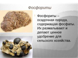Фосфориты Фосфориты – осадочная порода, содержащая фосфаты. Их размалывают и