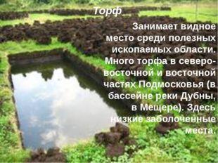 Торф. Занимает видное место среди полезных ископаемых области. Много торфа в