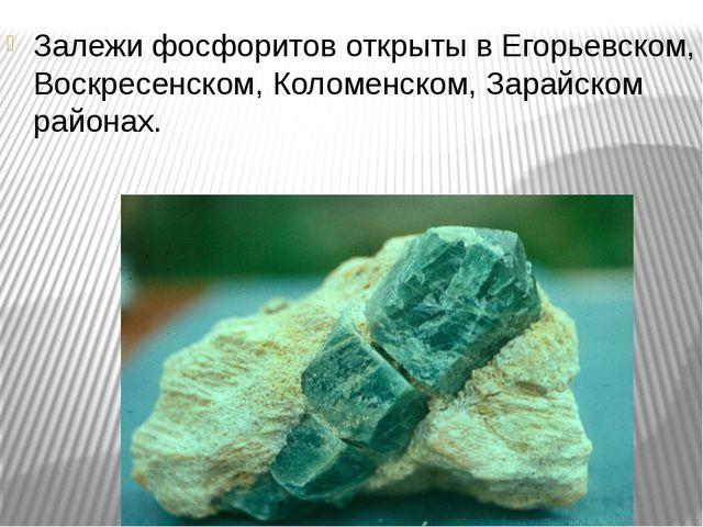 Залежи фосфоритов открыты в Егорьевском, Воскресенском, Коломенском, Зарайско...