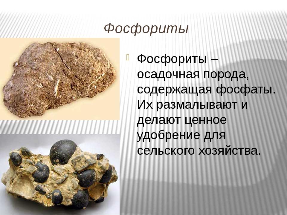 Фосфориты Фосфориты – осадочная порода, содержащая фосфаты. Их размалывают и...
