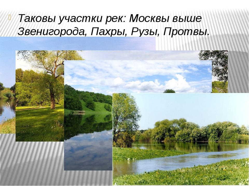 Таковы участки рек: Москвы выше Звенигорода, Пахры, Рузы, Протвы.