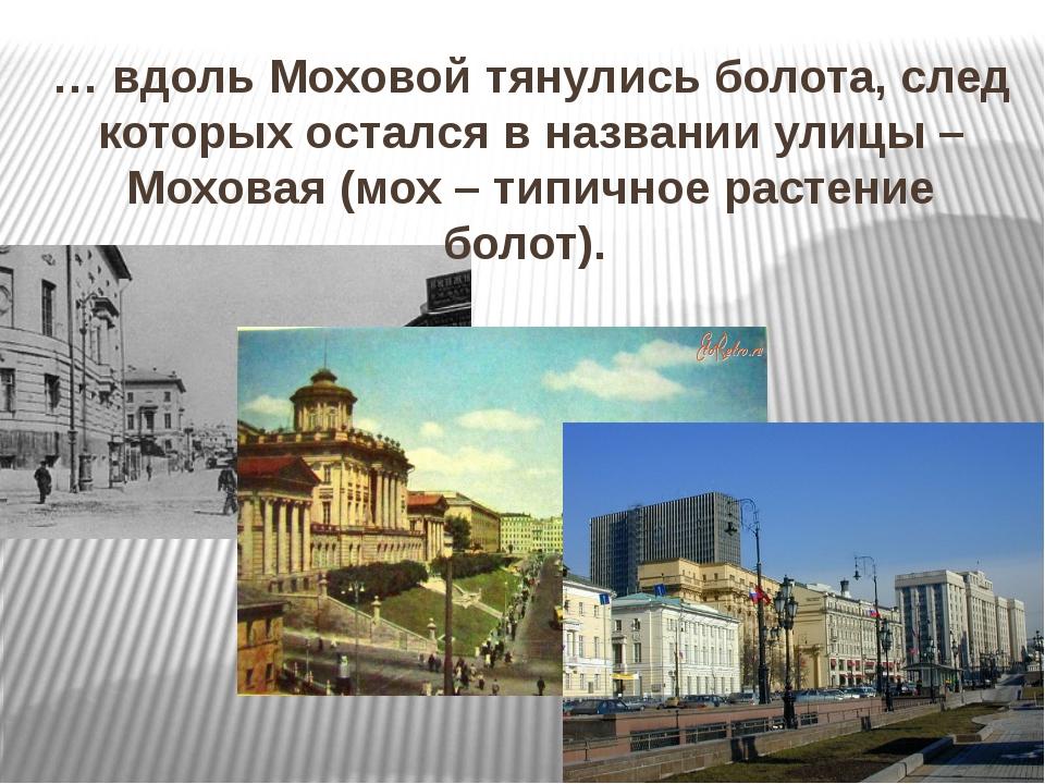 … вдоль Моховой тянулись болота, след которых остался в названии улицы – Мохо...