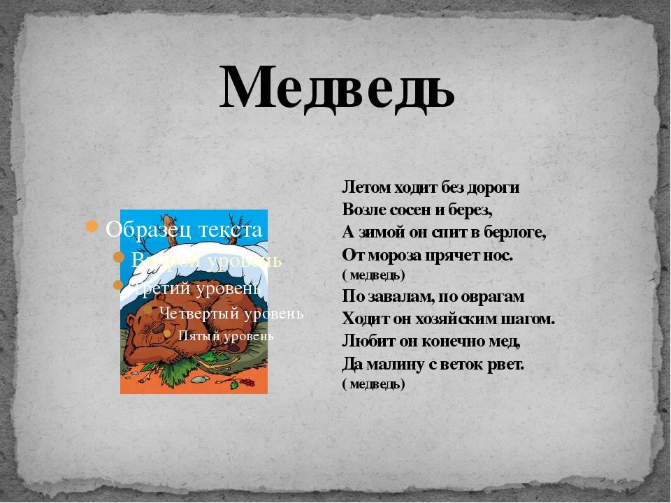 Летом ходит без дороги Возле сосен и берез, А зимой он спит в берлоге, От мор...