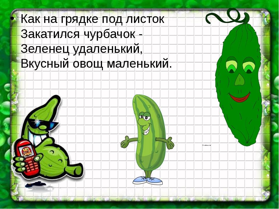 Как на грядке под листок Закатился чурбачок - Зеленец удаленький, Вкусный ово...
