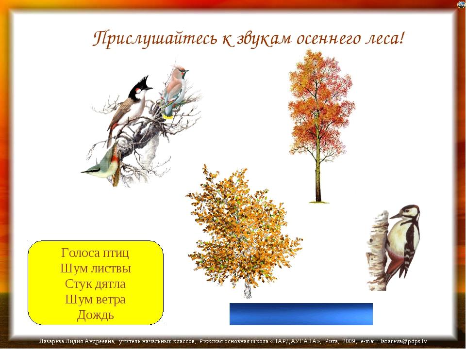 Голоса птиц Шум листвы Стук дятла Шум ветра Дождь Прислушайтесь к звукам осен...