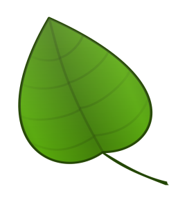 http://cdn.1001freedownloads.com/vector/thumb/139251/carlitos_Leaf.png