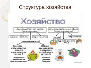 Структура хозяйства