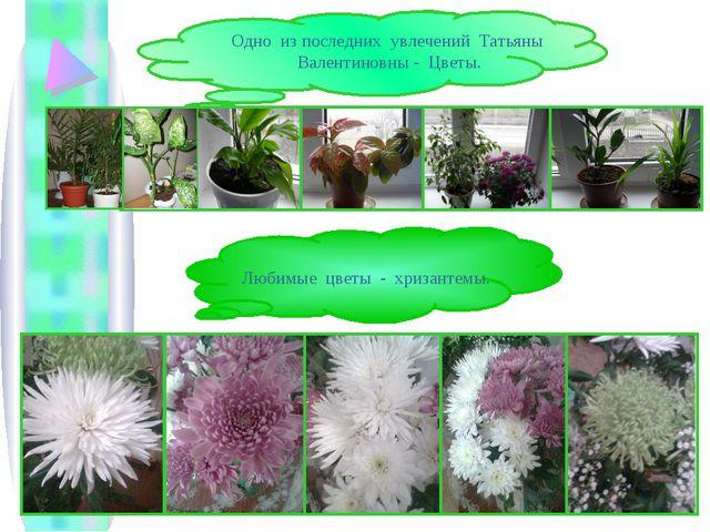 Одно из последних увлечений Татьяны Валентиновны - Цветы. Любимые цветы - хри...