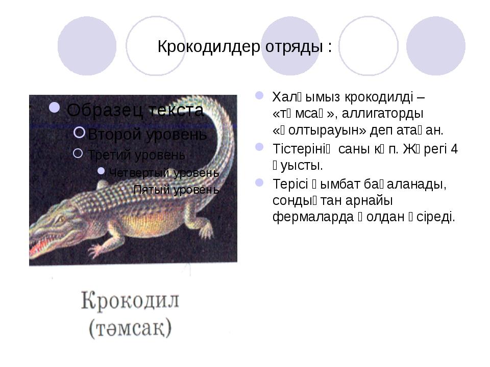 Крокодилдер отряды : Халқымыз крокодилді – «тәмсақ», аллигаторды «қолтырауын»...