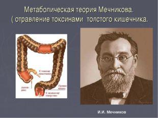 Метаболическая теория Мечникова. ( отравление токсинами толстого кишечника. И