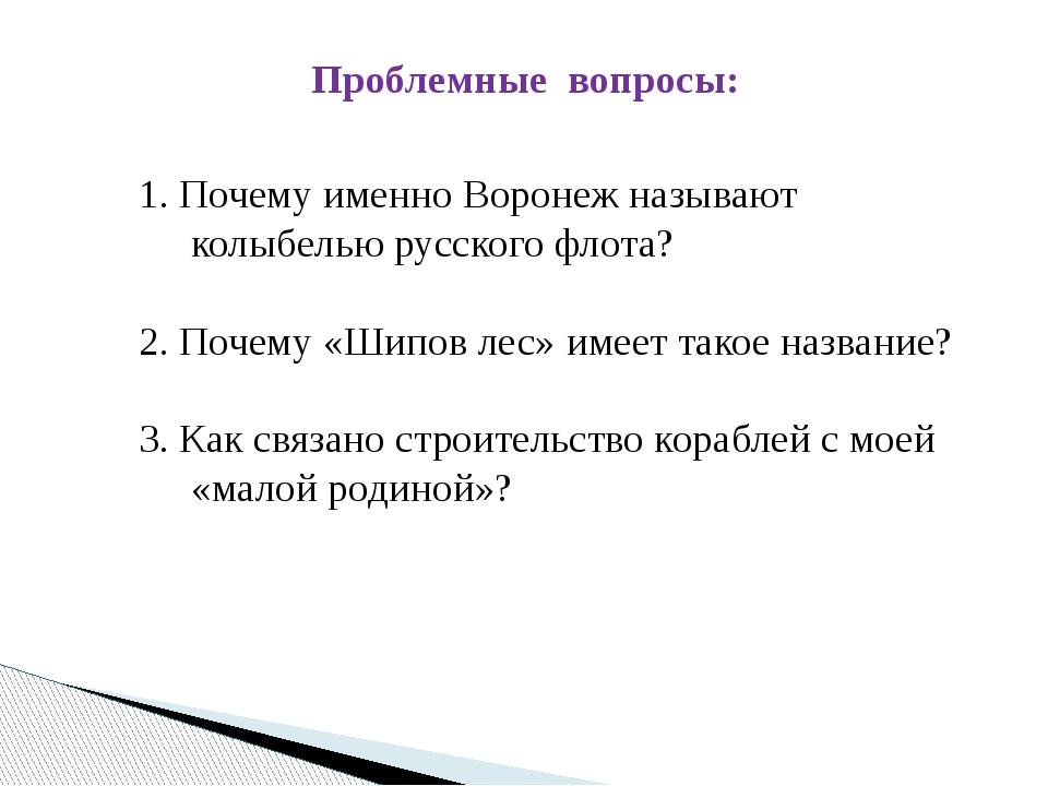Проблемные вопросы: 1. Почему именно Воронеж называют колыбелью русского флот...