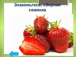 Закрепление Задание 2. Какие сказки связанные с растениями и их плодами вы зн