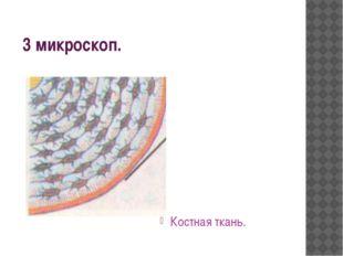 3 микроскоп. Костная ткань.