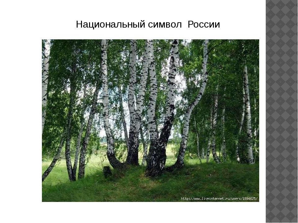 Национальный символ России