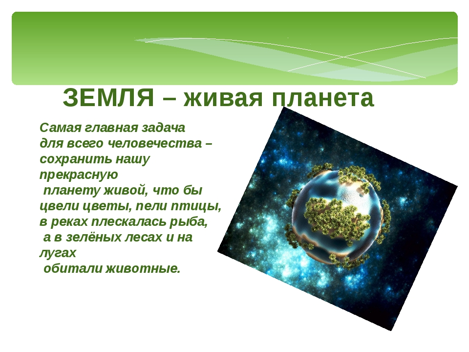 ЗЕМЛЯ – живая планета Самая главная задача для всего человечества – сохранить...