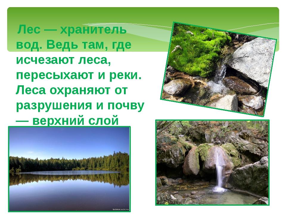 Лес — хранитель вод. Ведь там, где исчезают леса, пересыхают и реки. Леса ох...