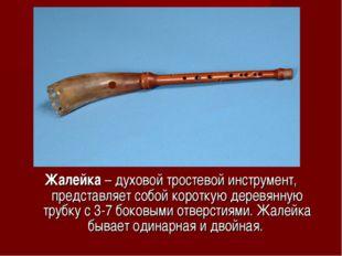 Жалейка – духовой тростевой инструмент, представляет собой короткую деревянну