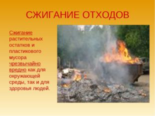 СЖИГАНИЕ ОТХОДОВ Сжигание растительных остатков и пластикового мусора чрезвыч