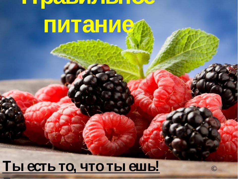 Правильное питание Ты есть то, что ты ешь! © Гиппократ