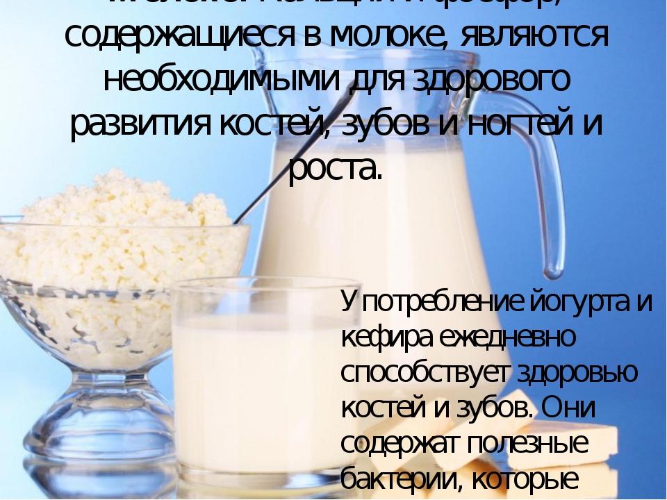 Молоко. Кальций и фосфор, содержащиеся в молоке, являются необходимыми для зд...
