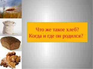 Что же такое хлеб? Когда и где он родился?