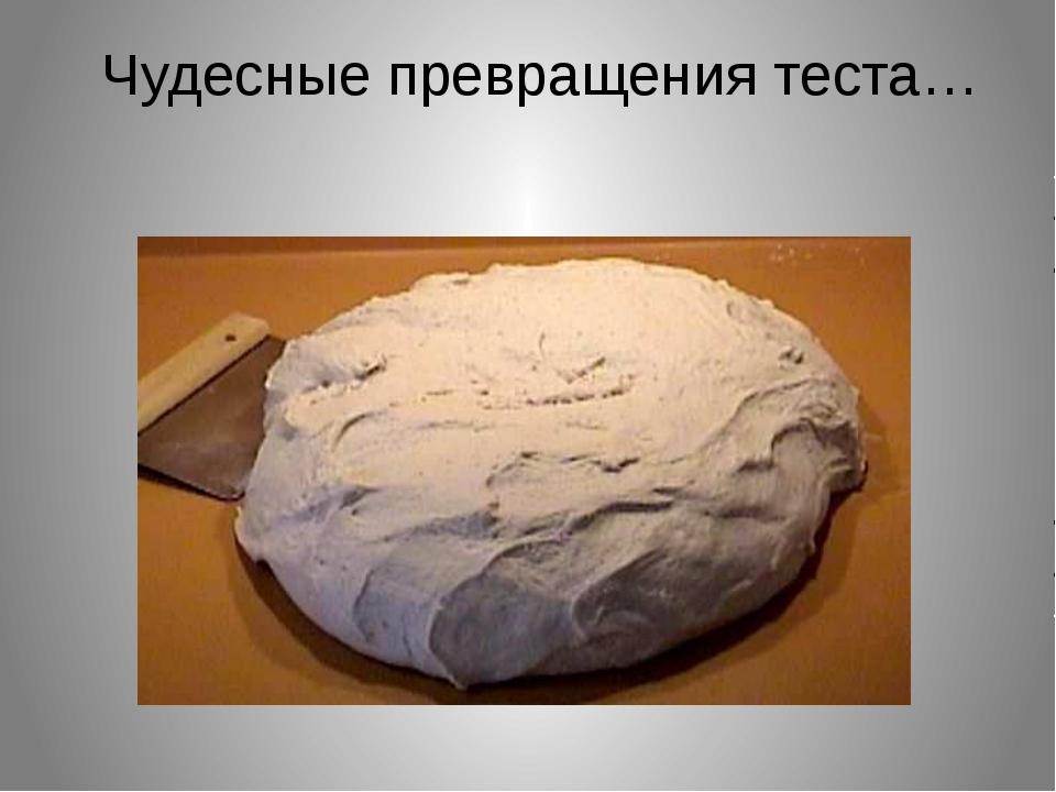 Во что превращается тесто ? Чудесные превращения теста…