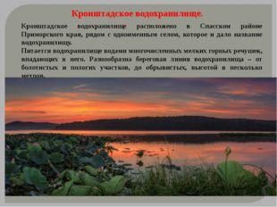 Кронштадское водохранилище расположено в Спасском районе Приморского края, р