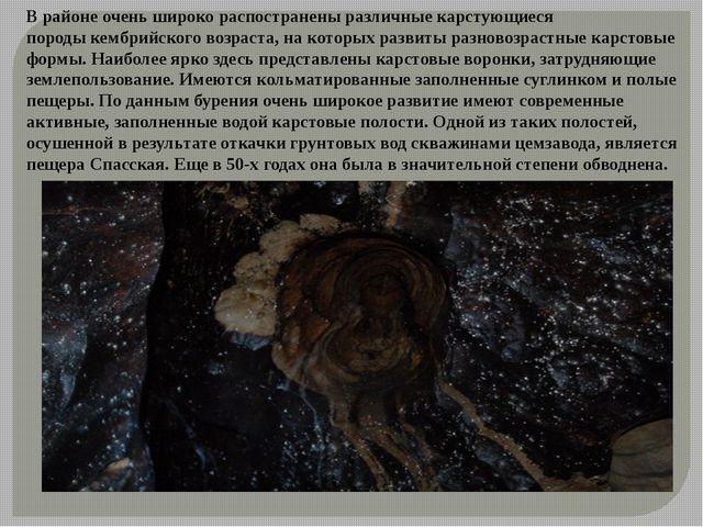 В районе очень широко распостранены различные карстующиеся породыкембрийског...