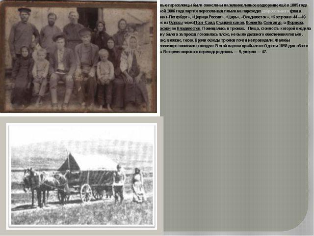 Первые переселенцы были зачислены назеленоклинное водворениеещё в 1885 году...