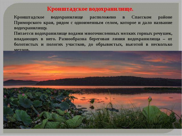 Кронштадское водохранилище расположено в Спасском районе Приморского края, р...
