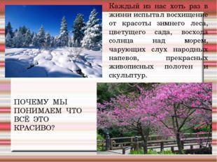 Каждый из нас хоть раз в жизни испытал восхищение от красоты зимнего леса, цв
