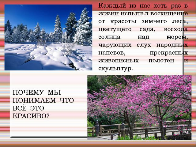 Каждый из нас хоть раз в жизни испытал восхищение от красоты зимнего леса, цв...