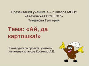 Презентация ученика 4 – б класса МБОУ «Гатчинская СОШ №7» Плешкова Григория Т